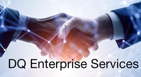 DQ Enterprise Services
